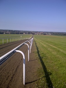looking down the gallop into Newmarket