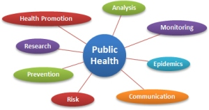 Public Health Diagram